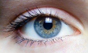Frapper l'oeil de vos visiteurs doit être votre but