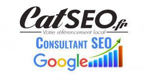 Consultant SEO Perpignan - Optimisez votre référencement sur Google